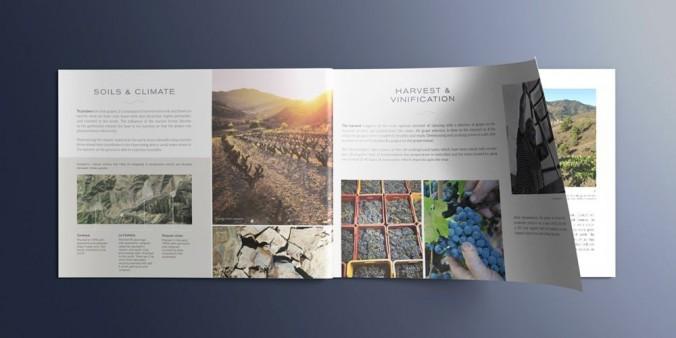 Catálogo Sangenís i Vaqué